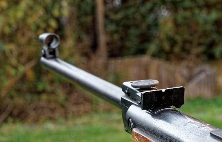 How to Silence a Pellet Gun